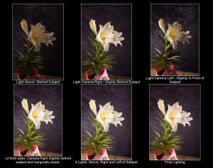 Effects of each light